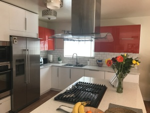 IKEA Sektion Kitchen remodel